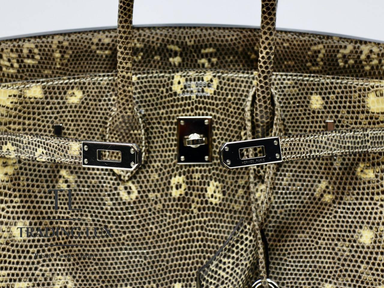Hermès-Birkin-25-Lizard-0