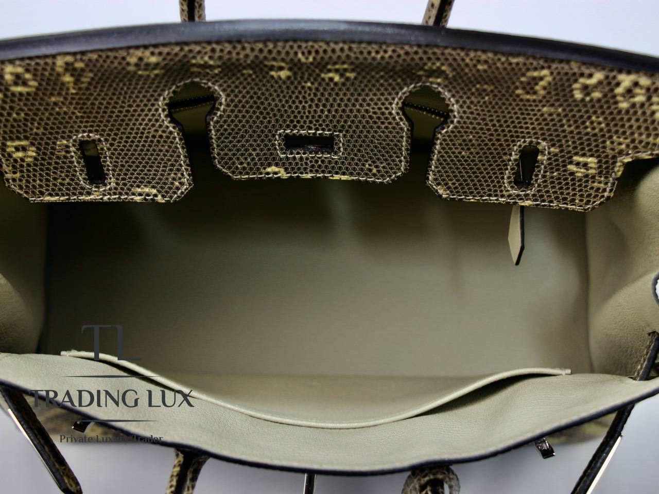 Hermès-Birkin-25-Lizard-10