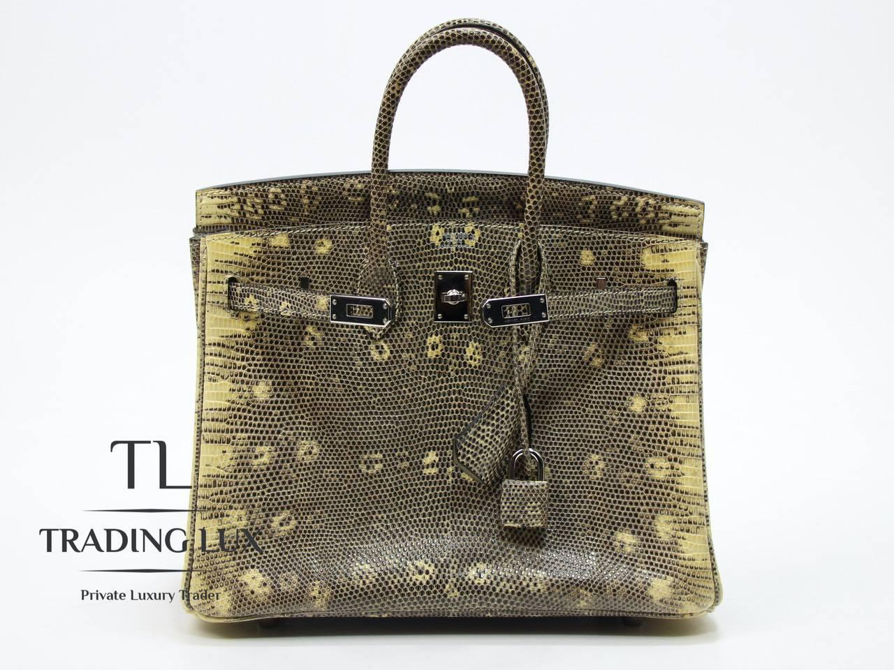 Hermès-Birkin-25-Lizard-11