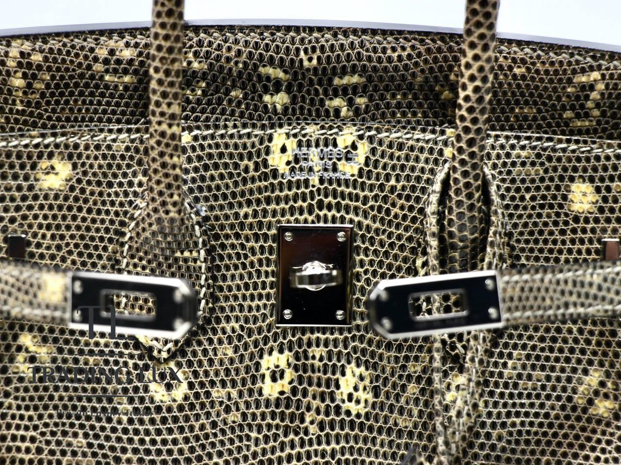 Hermès-Birkin-25-Lizard-2