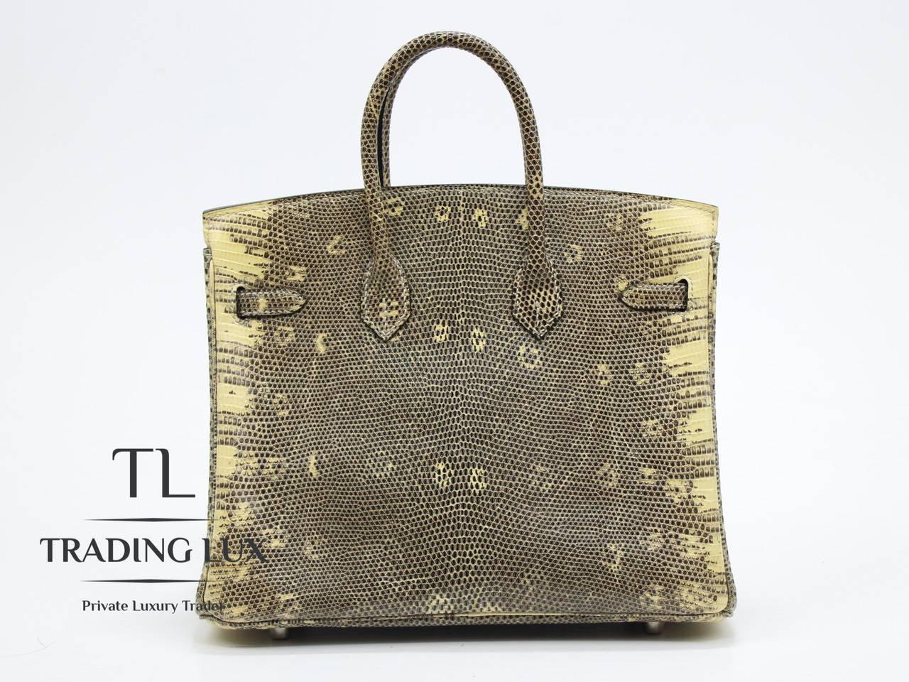 Hermès-Birkin-25-Lizard-4