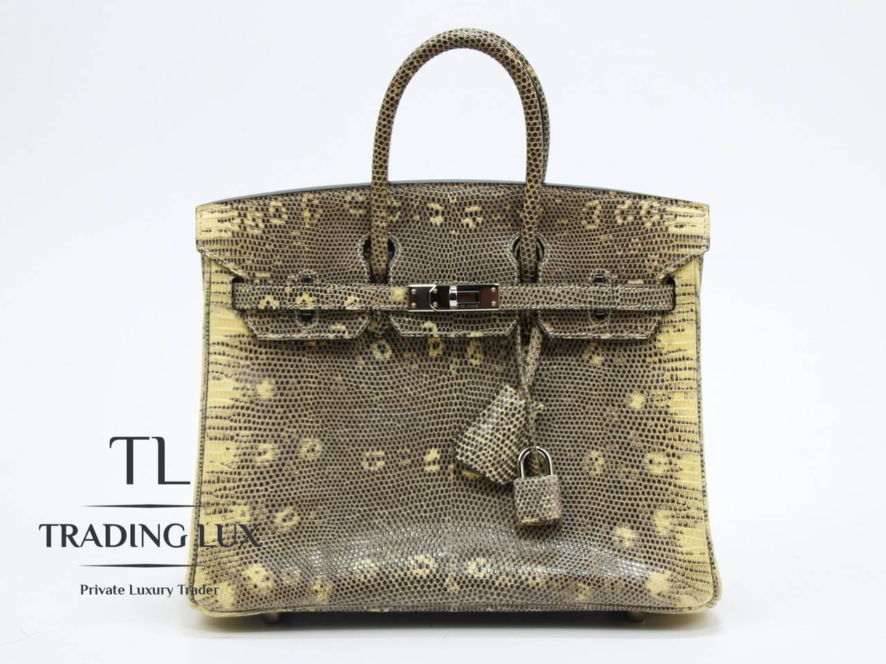 Hermès-Birkin-25-Lizard-6