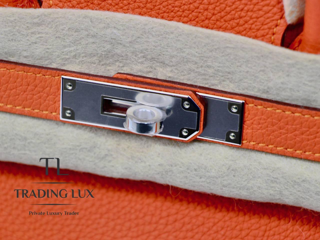 Hermès-Birkin-30-Feu-8