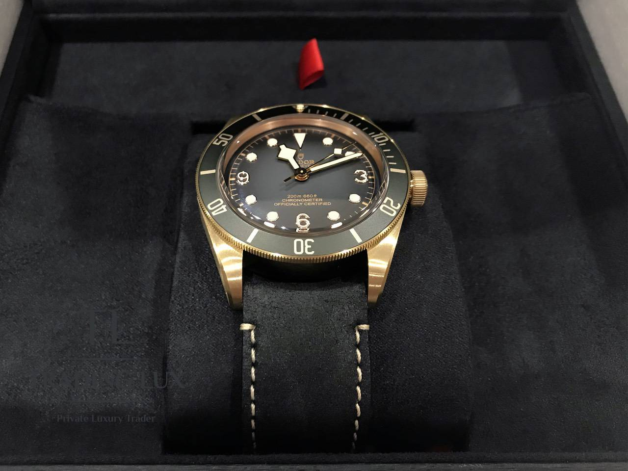 Tudor-Black-Bay-Bronze-79250BA-8