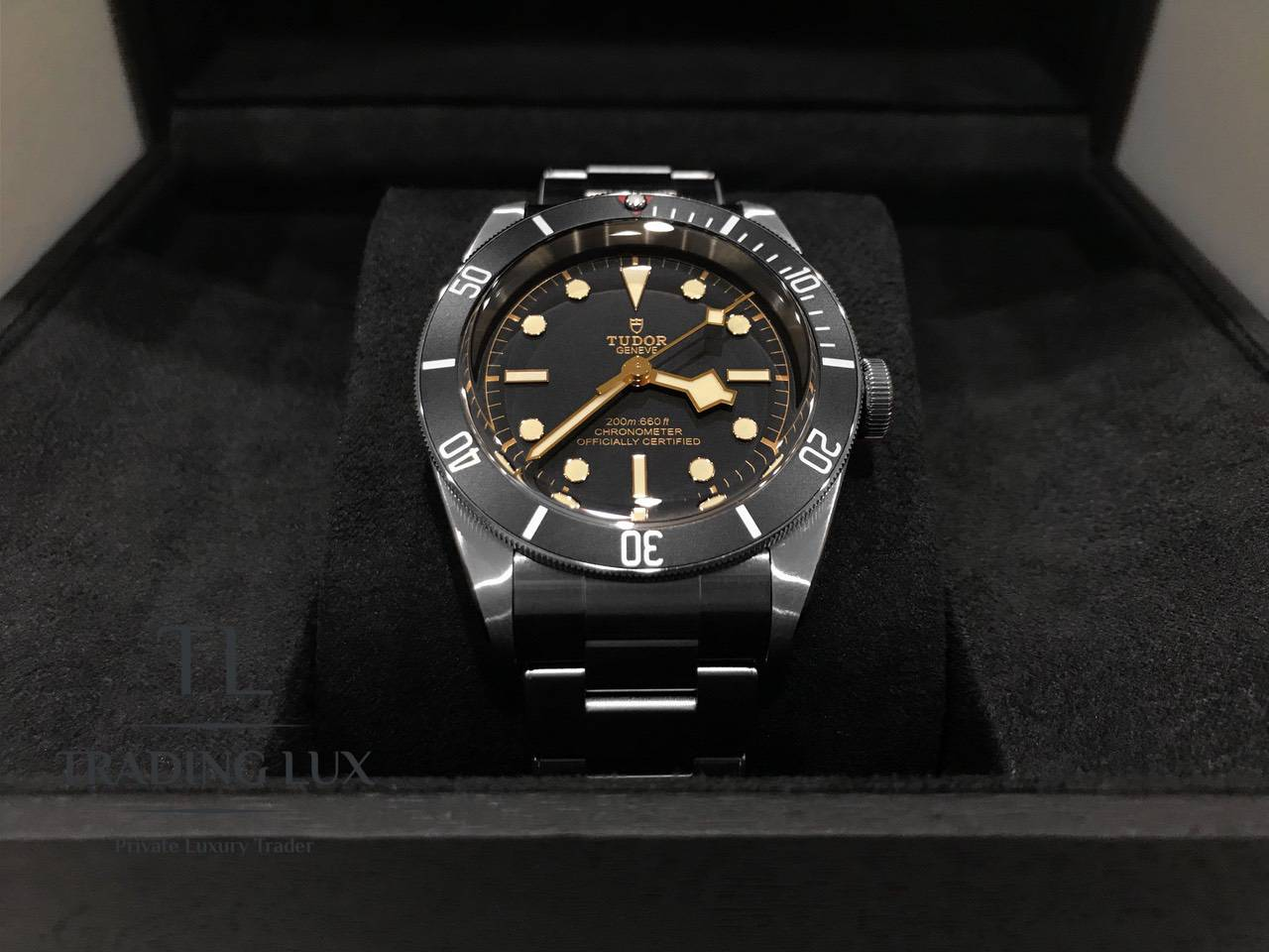 Tudor-Black-Bay-79230N-7