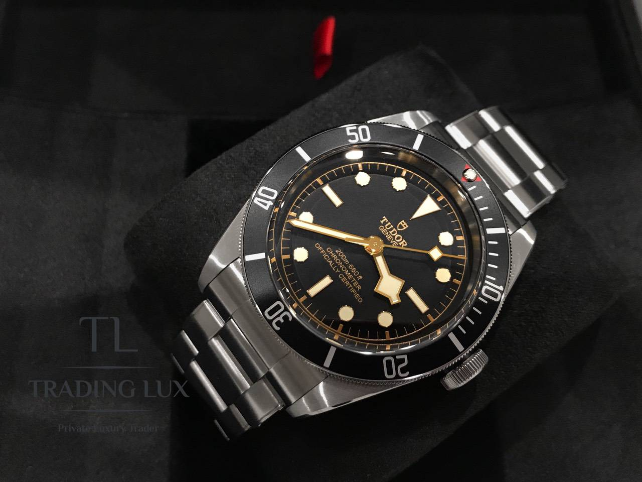 Tudor-Black-Bay-79230N-9