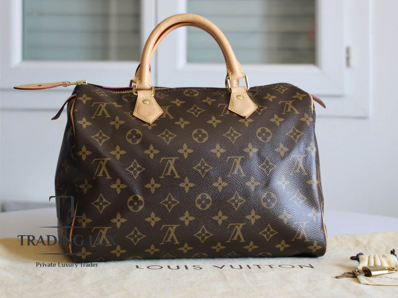 Louis-Vuitton-Speedy-V-2