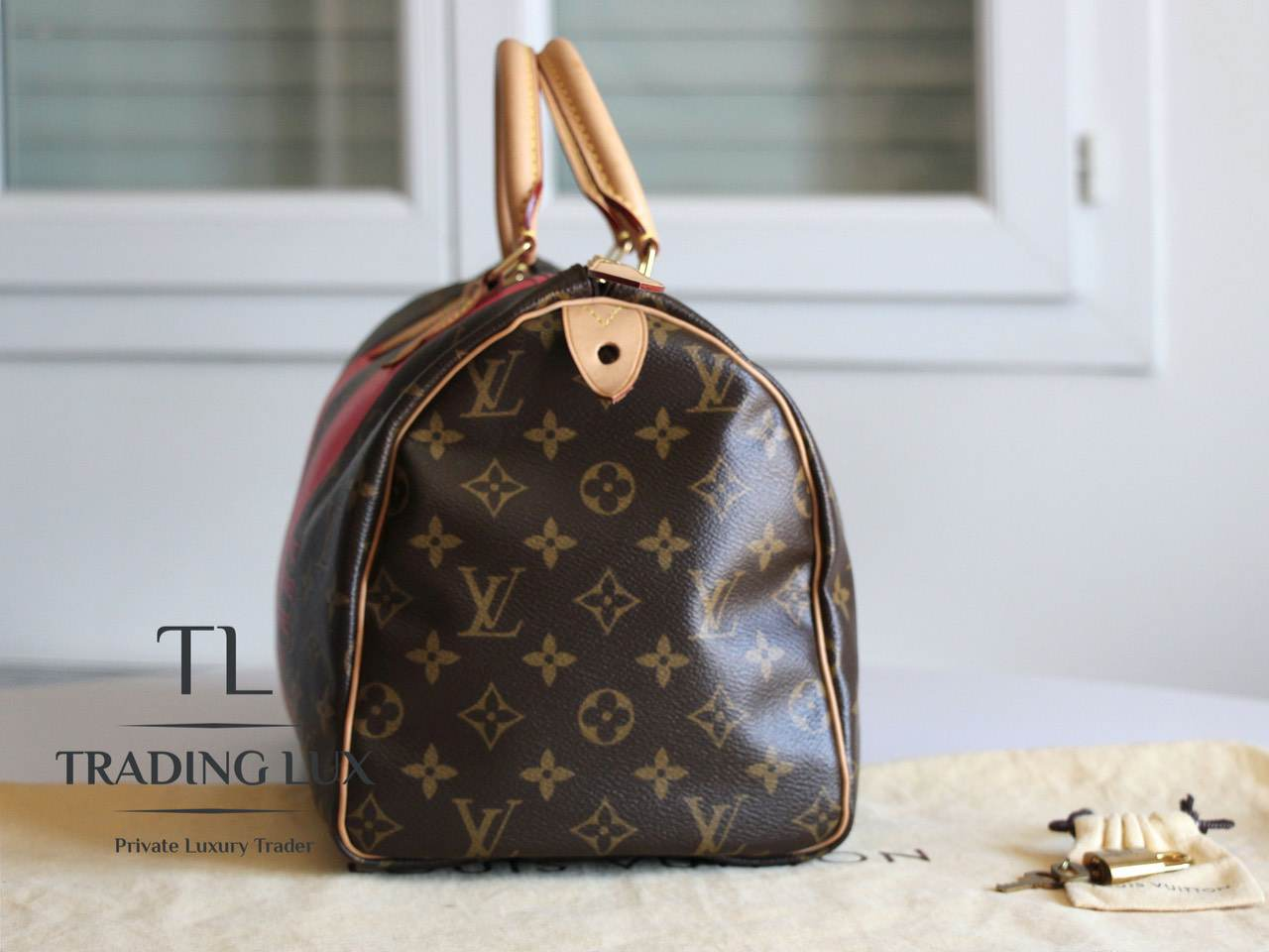 Louis-Vuitton-Speedy-V-3