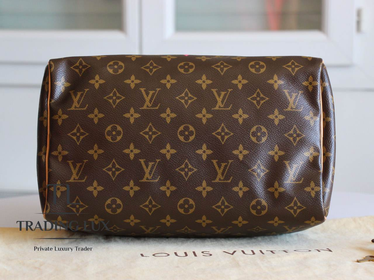 Louis-Vuitton-Speedy-V-4